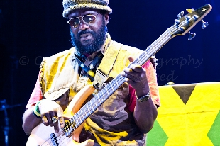 concertphotography-WAILERs_4513